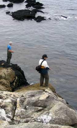 Guillaume FOURRIER et Florian BOUDEAU, les PecheWebMasters, en train de prospecter de biens belles étendues rocheuses.