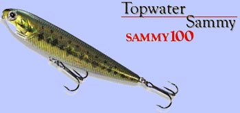 Sammy 100 de chez Lucky Craft : le leurre qui a révolutionné la pêche moderne du Bar au leurre de surface dès sa sortie en 1998.