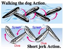 Nage en Walking the dog et en Short Jerk.